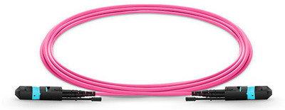 Why are MTP/MPO patch cords widely used?